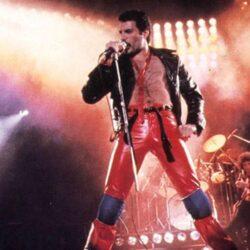 Świętowanie 74. urodziny Freddiego Mercury'ego